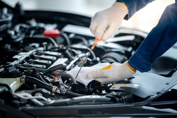 synthetic oil change SD